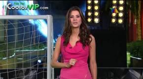 Patty Lopez de la Cerda Rebeka Zebrekos Minivestido Rosa.0009